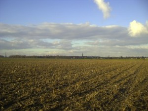 harvested_cornfield_oosterhout_by_viviones-d3awepw
